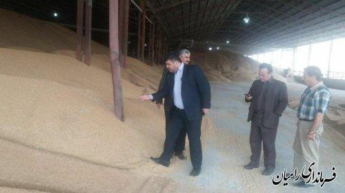 بازدید فرماندار رامیان از مراکز خرید گندم در سطح شهرستان