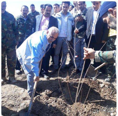 به مناسبت هفته منابع طبیعی مراسم کاشت نهال مثمر در اراضی شیبدار شهرستان رامیان برگزار شد